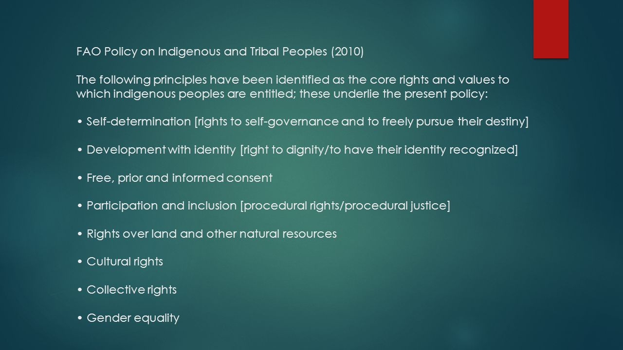 FAO Policy on Indigenous and Tribal Peoples (2010) The following principles have been identified as the core rights and values to which indigenous peoples are entitled; these underlie the present policy: • Self-determination [rights to self-governance and to freely pursue their destiny] • Development with identity [right to dignity/to have their identity recognized] • Free, prior and informed consent • Participation and inclusion [procedural rights/procedural justice] • Rights over land and other natural resources • Cultural rights • Collective rights • Gender equality